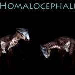 Homalocephale Monster Preview