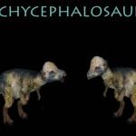 Pachycephalosaurus Monster Preview